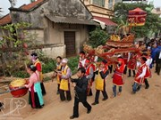Unique breeding fertility festival in Phu Tho province