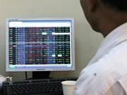Momentum wanes on VN-Index