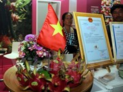 Vietnam's dragon fruits introduced at Berlin international fair