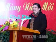 Vice NA Chairwoman meets overseas Vietnamese in New York