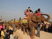Elephant festival in northern Lao province