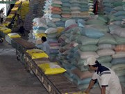 Vietnam should focus on high-quality rice, experts say