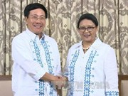 Vietnam, Indonesia consolidate friendship