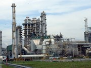 Vietnam refinery predicts profit dips