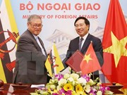 Vietnam, Brunei target 500 mln USD two-way trade by 2025