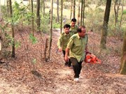 Ministry orders expanded forest-fire protection in dry season