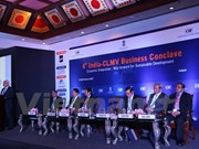 Vietnam-India economic cooperation grows strongly