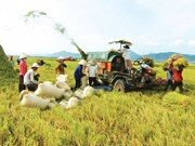 Nghe An strives to have 225 new-style rural communes by 2020