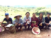 Japanese woman kindles organic cultivation among Vietnamese farmers