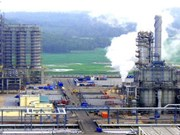 Thai group increases stake in VN's first petrochemical complex