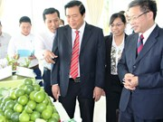Long An, Chinese locality strengthen cooperation