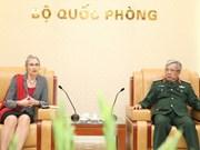 Vietnam, Netherlands boost peacekeeping cooperation