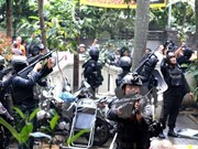 Indonesia arrests militants setting up jihadist training camp