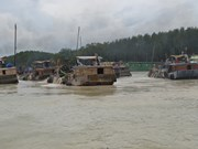 Four sand mining projects suspended in Dong Nai