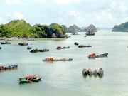 Hai Phong greets 1.32 million tourists in Q1