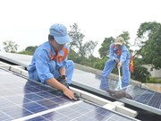 Khanh Hoa to build coastal solar plant