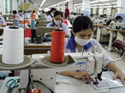 Vietnamese apparel firms avoid stock market for now