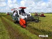 Mekong Delta has good economic governance