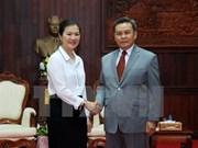 Vietnamese, Lao front agencies boost cooperation