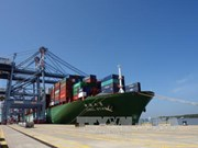 Ba Ria-Vung Tau: One more port receives large container ships