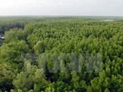 Programme on gas emission and deforestation reduction gets approved