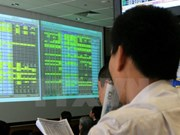 Shares slow on investor caution