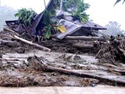Flash floods in Western Indonesia kill two, quake hits Philippines