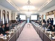 Vietnamese, Japanese localities seek stronger economic links