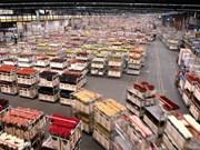 Deputy PM visits world's largest flower auction platform in Netherland