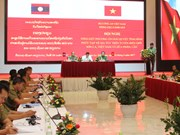Vietnamese, Lao provinces intensify crackdown on drug crimes