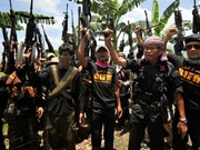 Jemaah Islamiyah militant group regains strength: experts