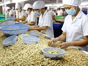 Int'l client conference to promote Binh Phuoc's cashew