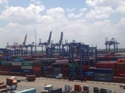 Container control unit launched in Ba Ria-Vung Tau
