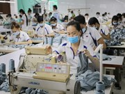 Vietnam, US share supplementary strengths for development