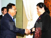 Vietnam hopes for Laos's support in Mekong River water management