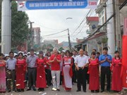 Canon lights up more rural roads in Bac Giang province