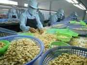 Binh Phuoc eyes more cashew products reaching global markets