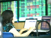 Shares rise on investor confidence