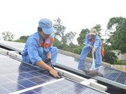 Island commune in Quang Ngai to have solar power