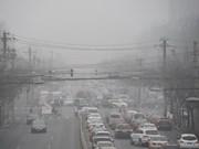 Air quality management plan designed for Mekong Delta city