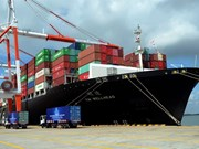 Foreign trade law needed: deputies
