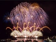 Spectacular light feast at Da Nang int'l fireworks festival