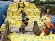 Vietnam's fertiliser imports surge in five months