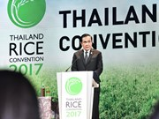 Thailand promoted as world's rice trade centre