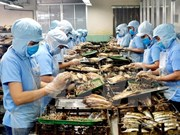 Vietnam's aquatic product exports hit 2.8 billion USD