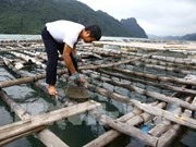 Aquaculture production picks up in May