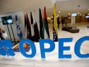 Indonesia wants to rejoin OPEC