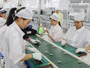 Vietnam-EU trade up 16.2 percent in five months