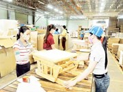 EU forest pact gives Vietnam timber firms a leg up
