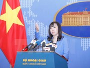 Vietnam wants to develop friendship with RoK: FM's spokesperson